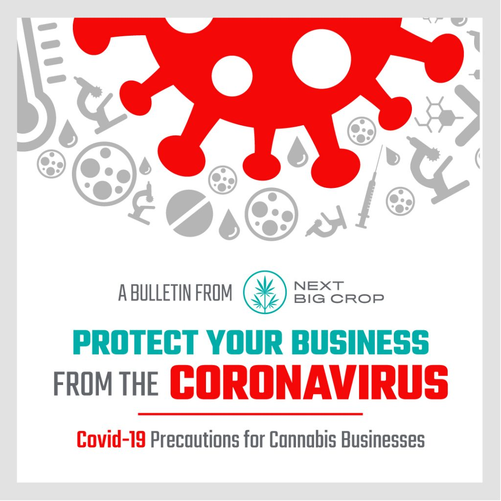 How to Protect Your Cannabis Business From The Corona Virus