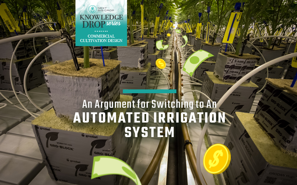 An Argument for Switching Your Facility to an Automated Irrigation System