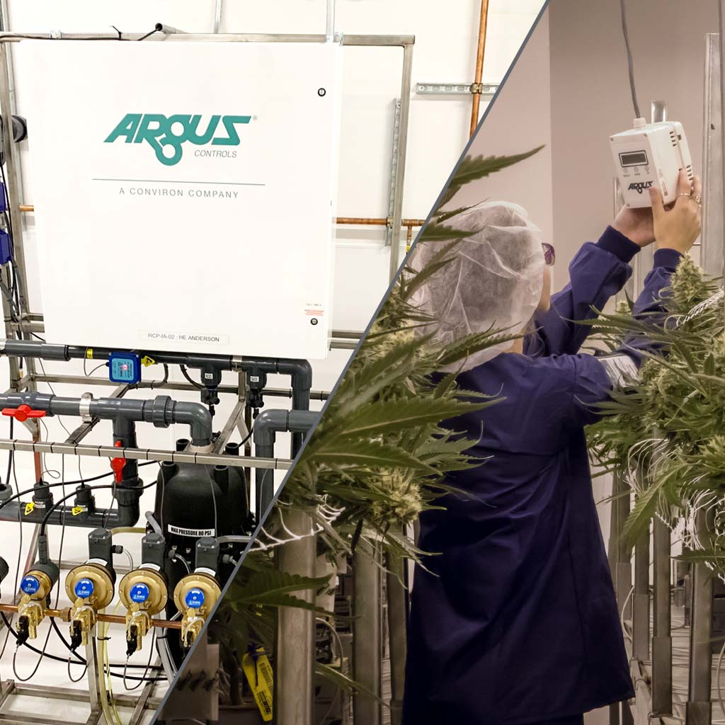Checking Argus Controls Automated Systems