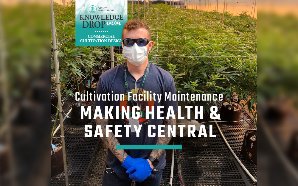 Making Health and Safety Central to Cultivation Facility Maintenance