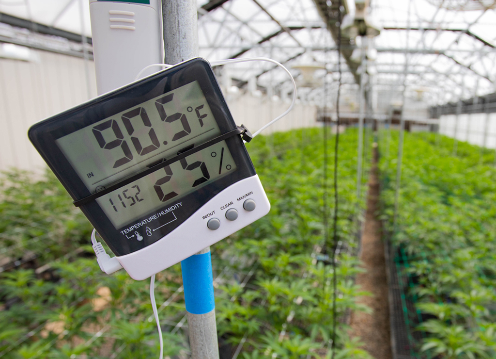 Automated Greenhouse Controls