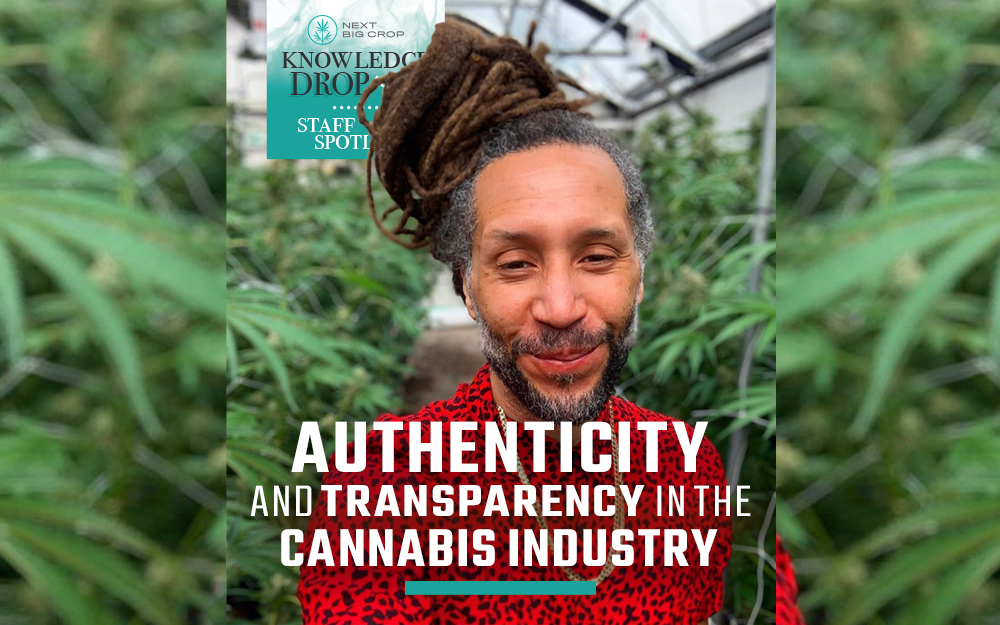 Knowledge Drop Series Authenticity In The Cannabis Industry