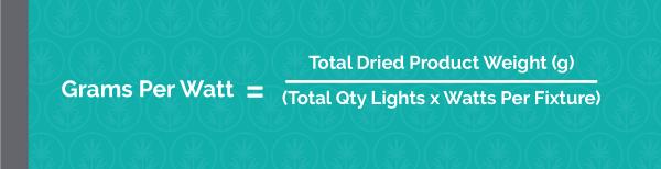 Grams Per Watt = Total Dried Product Weight (g) / Total Qty Lights x Watts Per Fixture