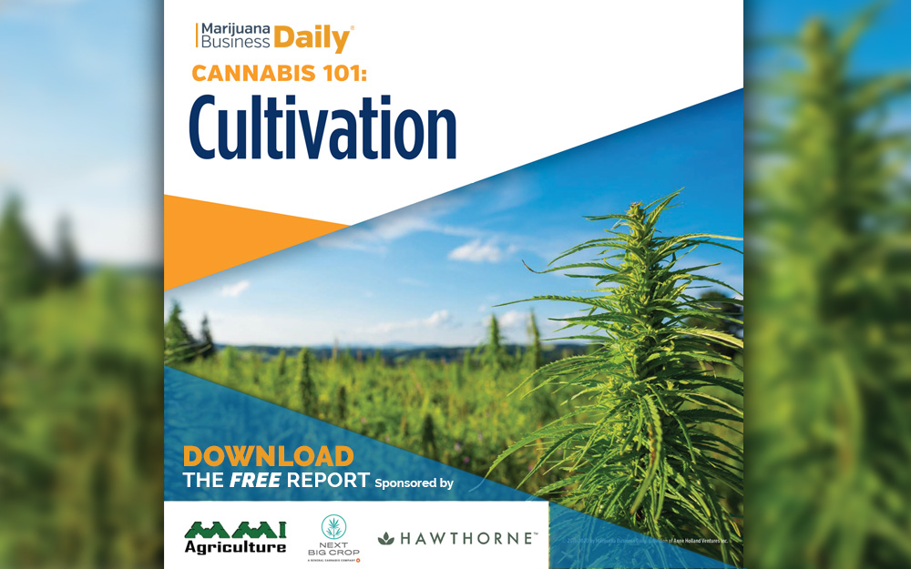 MJBiz Daily CultivationReport