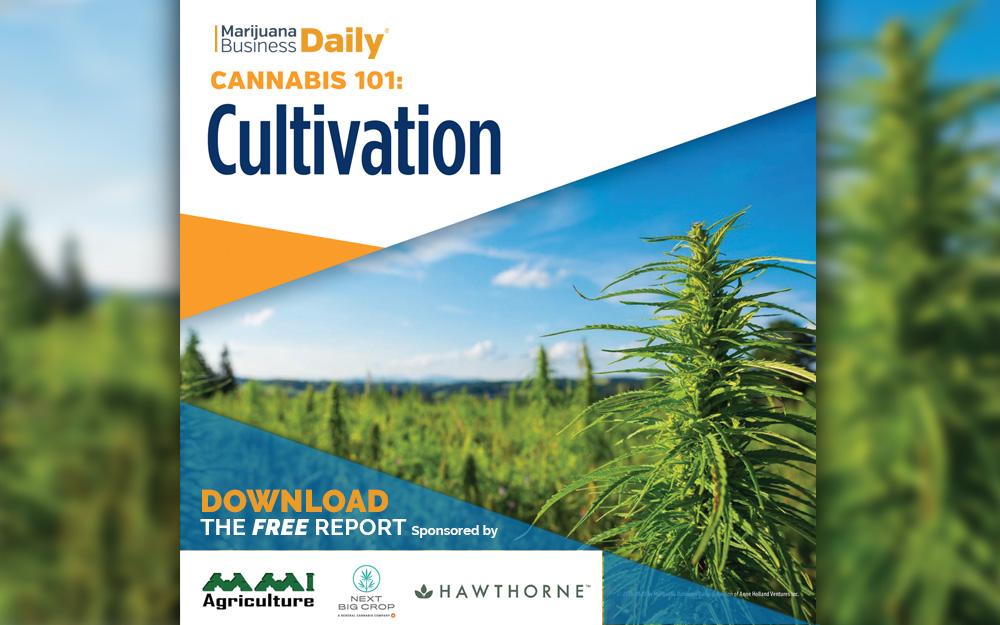 MJBiz Daily CultivationReport