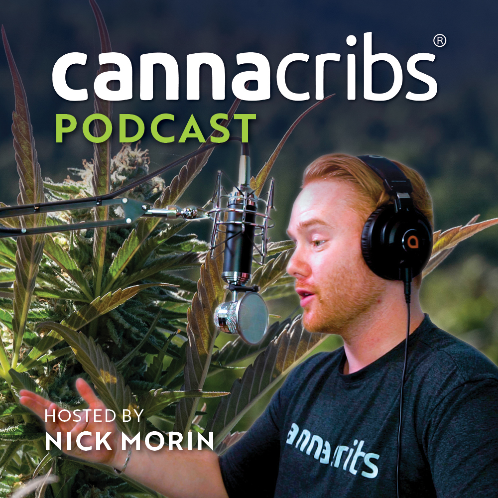 Cannacribs podcast #8 - Next Big Crop