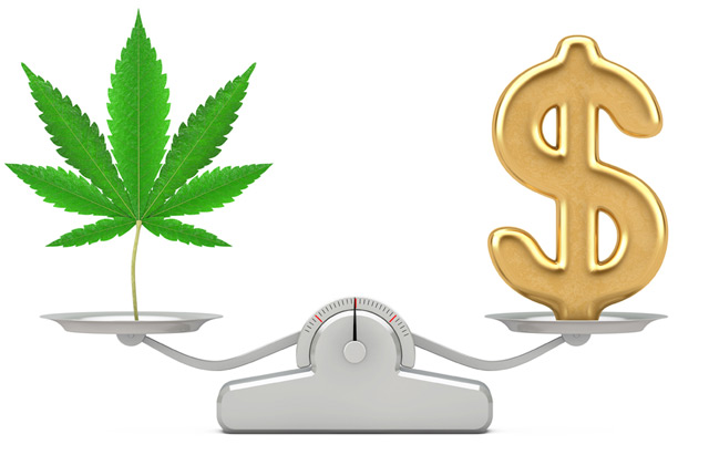 Cannabis and Money Symbol On Scale
