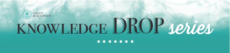 Next Big Crop Knowledge Drop Series